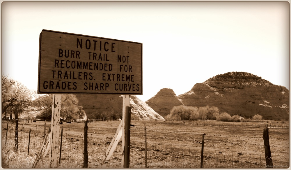 photoblog image Burr Trail Road