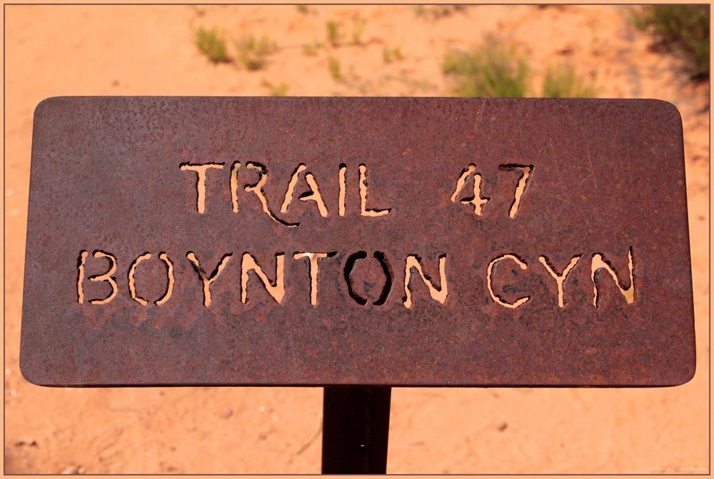 photoblog image Boynton Canyon Trail